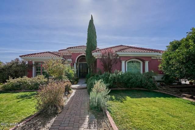 17331 E Starflower Court, Queen Creek, AZ 85142 (MLS #6176643) :: Klaus Team Real Estate Solutions
