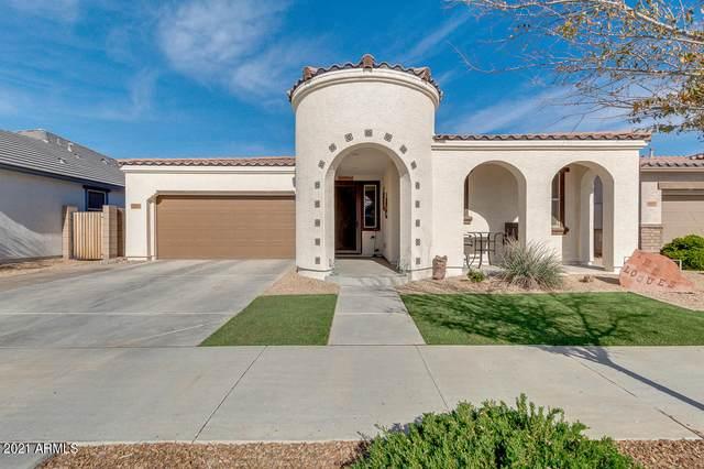22456 E Via Del Verde Drive, Queen Creek, AZ 85142 (MLS #6176796) :: The Property Partners at eXp Realty