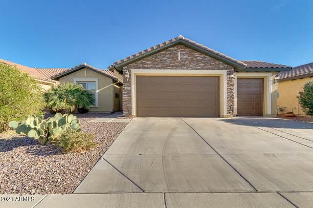 4073 N Hidden Canyon Drive, Florence, AZ 85132 (MLS #6177019) :: Yost Realty Group at RE/MAX Casa Grande