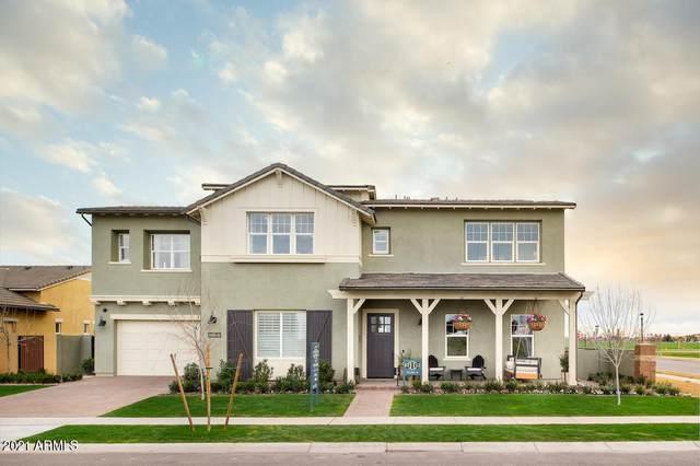 3361 E Sagebrush Street, Gilbert, AZ 85296 (MLS #6179339) :: The Helping Hands Team
