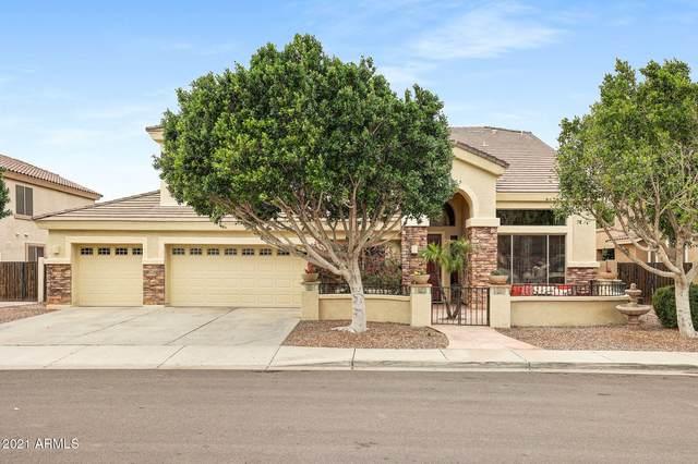 25652 N 70th Lane, Peoria, AZ 85383 (MLS #6180580) :: Sheli Stoddart Team | M.A.Z. Realty Professionals
