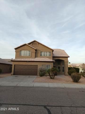 4452 E Redwood Lane, Phoenix, AZ 85048 (MLS #6180585) :: Yost Realty Group at RE/MAX Casa Grande