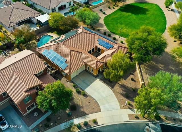22433 E Creekside Lane, Queen Creek, AZ 85142 (MLS #6181033) :: Klaus Team Real Estate Solutions