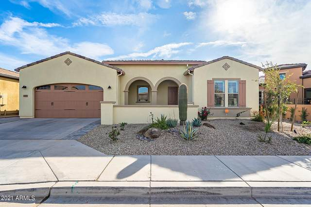 187 E Catalina Lane, San Tan Valley, AZ 85140 (MLS #6181220) :: Arizona Home Group