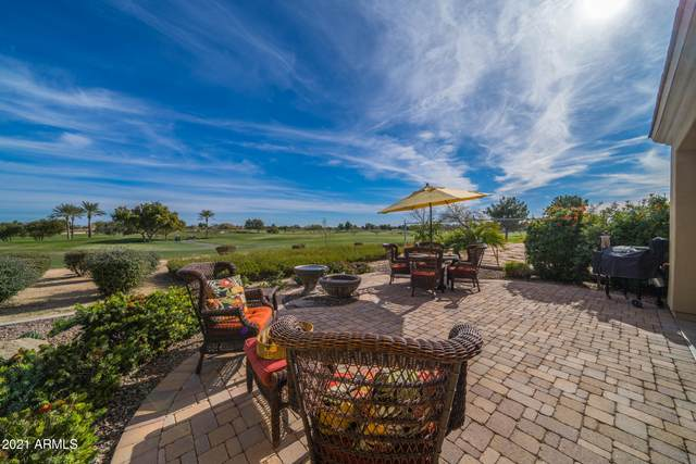 37163 N Wild Barley Path, Queen Creek, AZ 85140 (MLS #6181507) :: Yost Realty Group at RE/MAX Casa Grande