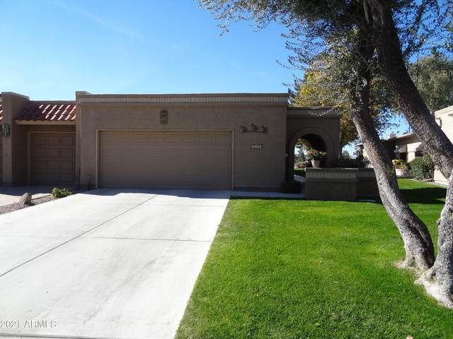25250 S Saddletree Drive, Sun Lakes, AZ 85248 (MLS #6182013) :: The Property Partners at eXp Realty