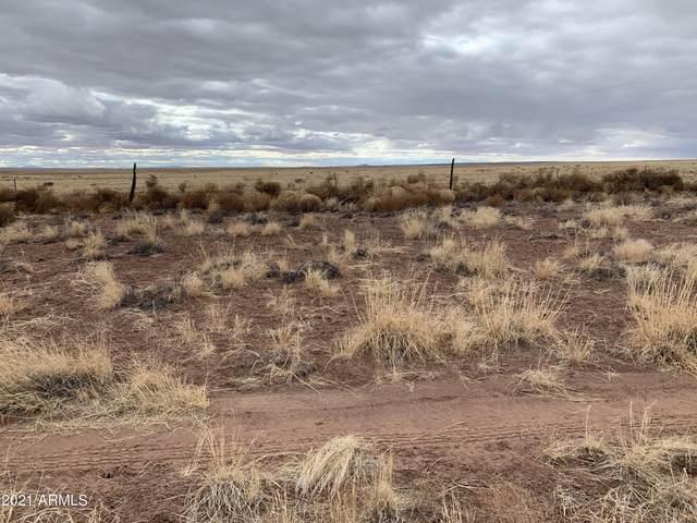 Sun Valley Highland Lot 112, Holbrook, AZ 86025 (MLS #6182402) :: Yost Realty Group at RE/MAX Casa Grande