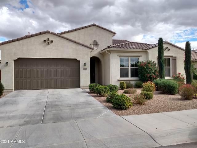 6869 S Claiborne Avenue, Gilbert, AZ 85298 (MLS #6184602) :: The Kurek Group