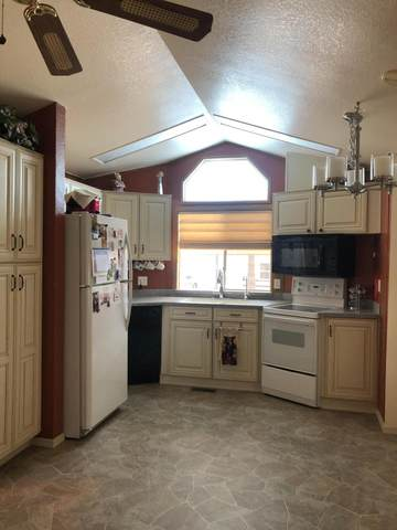 2249 W San Juan Circle, Apache Junction, AZ 85119 (MLS #6185337) :: My Home Group