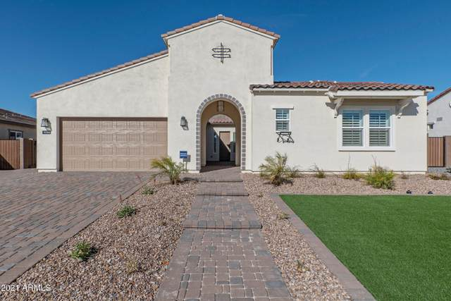 9586 W Villa Chula, Peoria, AZ 85383 (MLS #6185390) :: Maison DeBlanc Real Estate
