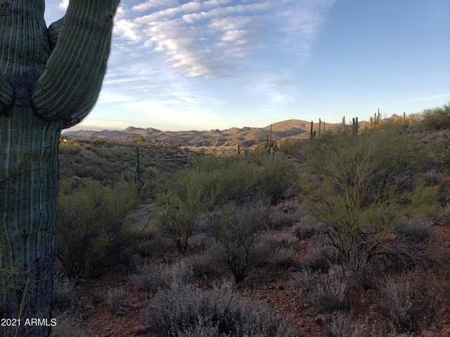 00000 N 295th Avenue, Wickenburg, AZ 85390 (MLS #6186528) :: Yost Realty Group at RE/MAX Casa Grande