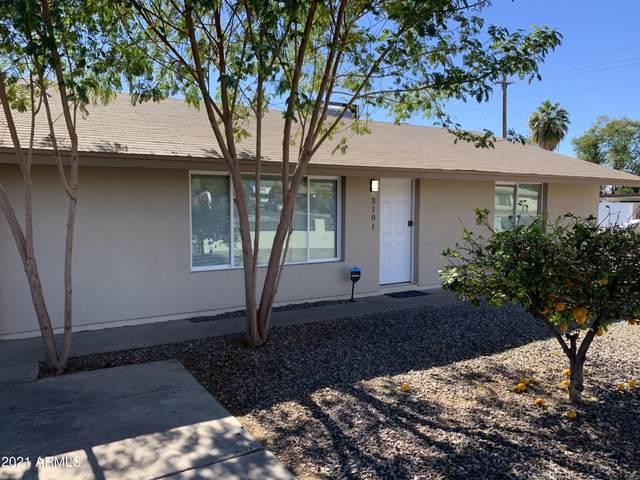 3101 E Roosevelt Street, Phoenix, AZ 85008 (MLS #6187068) :: Yost Realty Group at RE/MAX Casa Grande