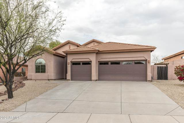 8040 E Dalea Way, Gold Canyon, AZ 85118 (MLS #6187476) :: Long Realty West Valley