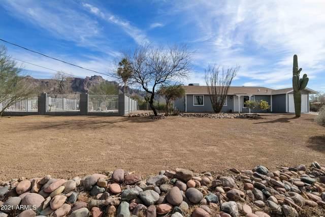 1135 N Shotgun Court, Apache Junction, AZ 85119 (MLS #6190619) :: Yost Realty Group at RE/MAX Casa Grande
