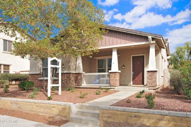 2851 N Riley Road, Buckeye, AZ 85396 (MLS #6190820) :: Yost Realty Group at RE/MAX Casa Grande