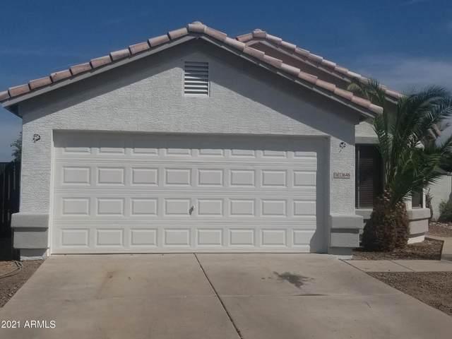 13646 W Solano Drive, Litchfield Park, AZ 85340 (MLS #6191846) :: Yost Realty Group at RE/MAX Casa Grande