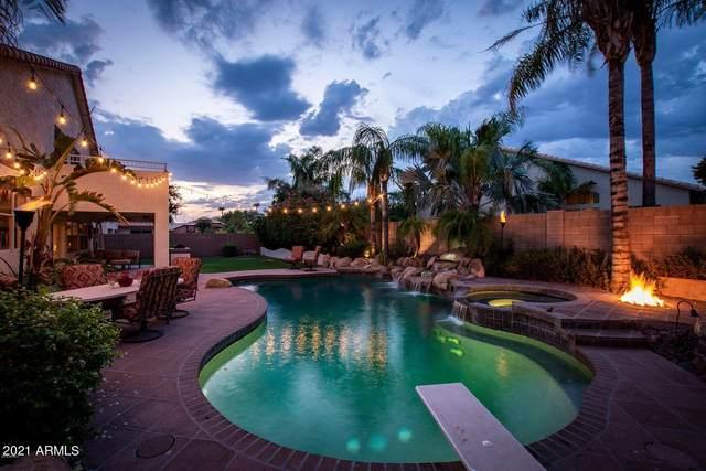 7816 W Kimberly Way, Glendale, AZ 85308 (MLS #6192500) :: Yost Realty Group at RE/MAX Casa Grande