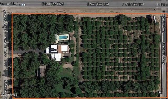 26015 S Mandarin Drive, Queen Creek, AZ 85142 (MLS #6193039) :: Yost Realty Group at RE/MAX Casa Grande