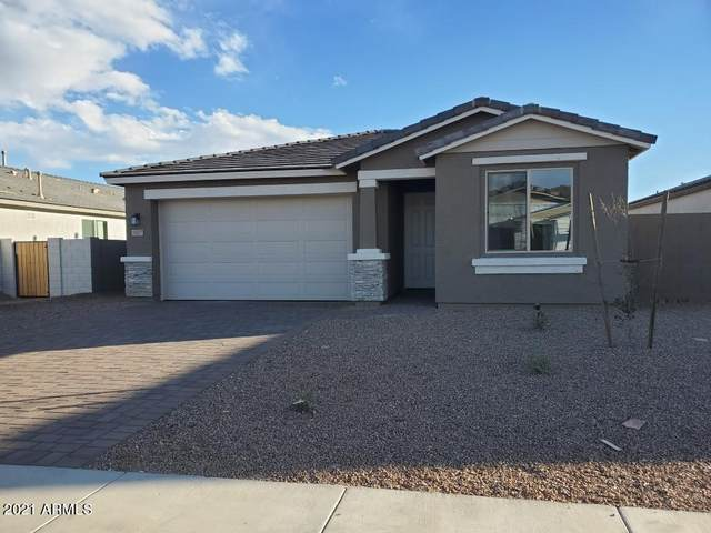 13337 W Lariat Lane, Peoria, AZ 85383 (MLS #6193565) :: Yost Realty Group at RE/MAX Casa Grande