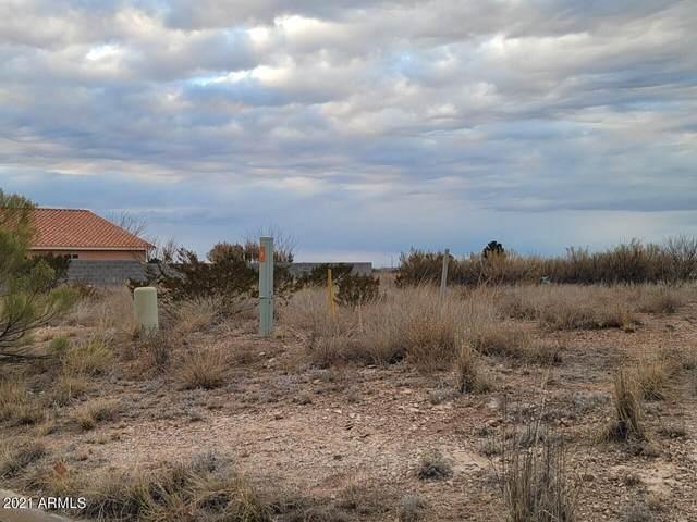 XXXX E Old Palo Verde Drive, Douglas, AZ 85607 (MLS #6193877) :: Yost Realty Group at RE/MAX Casa Grande