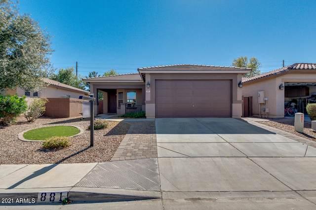 881 W Trellis Road, San Tan Valley, AZ 85140 (MLS #6194288) :: Yost Realty Group at RE/MAX Casa Grande