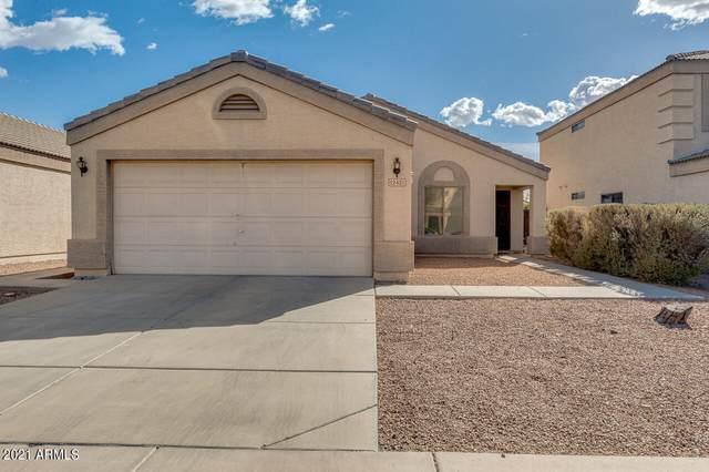 12421 W Columbine Drive, El Mirage, AZ 85335 (MLS #6194408) :: Yost Realty Group at RE/MAX Casa Grande