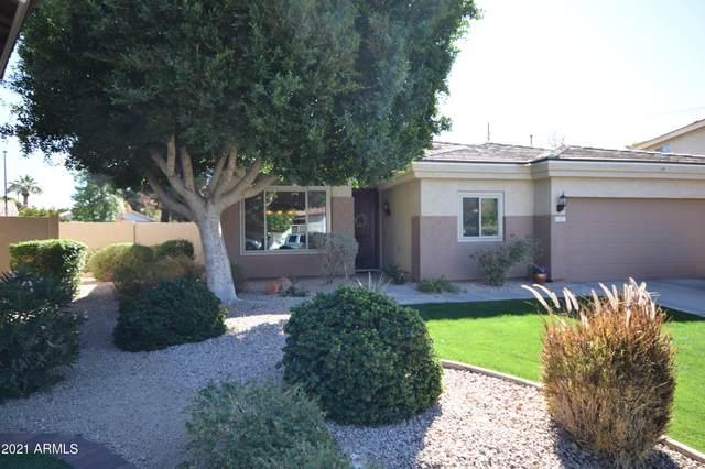 827 N Date Palm Drive, Gilbert, AZ 85234 (MLS #6195073) :: Yost Realty Group at RE/MAX Casa Grande