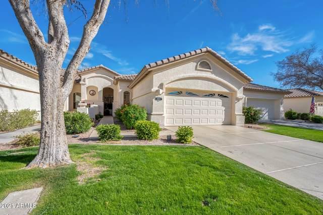 23813 S Pleasant Way, Sun Lakes, AZ 85248 (MLS #6197472) :: The Copa Team | The Maricopa Real Estate Company