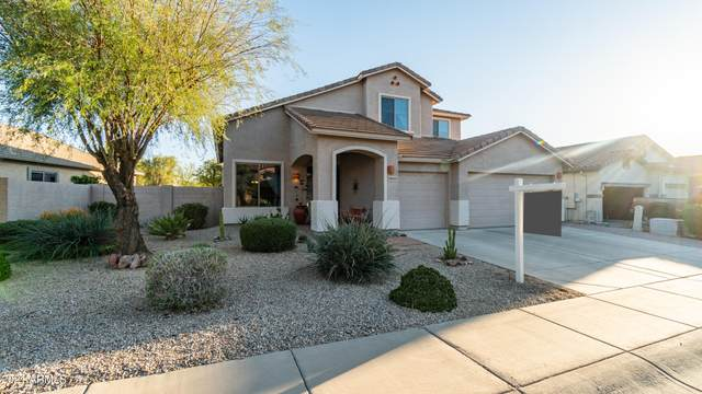 18065 E Via Margarita, Gold Canyon, AZ 85118 (MLS #6199295) :: Yost Realty Group at RE/MAX Casa Grande