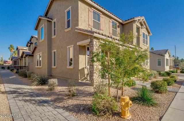 157 N Sandal, Mesa, AZ 85205 (MLS #6200157) :: Executive Realty Advisors