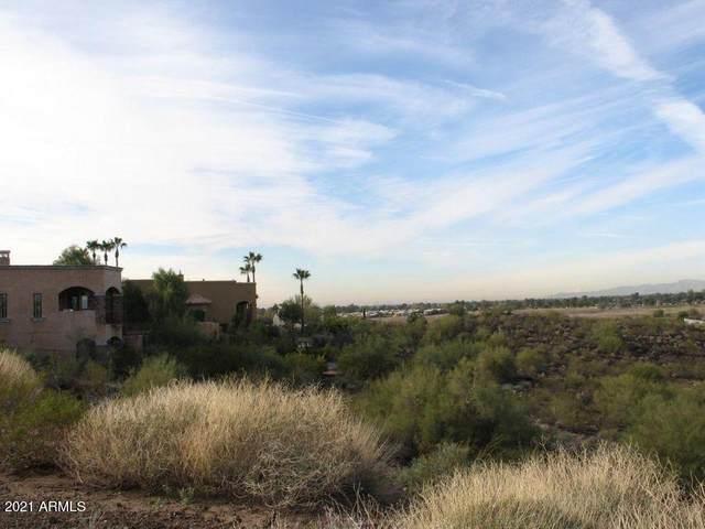 15026 N 15TH Drive, Phoenix, AZ 85023 (MLS #6200570) :: The Laughton Team