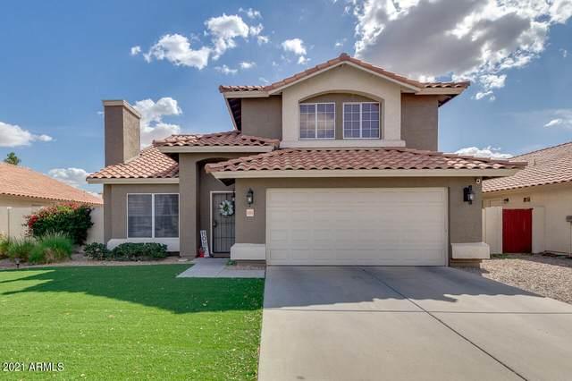 6909 E Lobo Avenue, Mesa, AZ 85209 (MLS #6200891) :: Yost Realty Group at RE/MAX Casa Grande