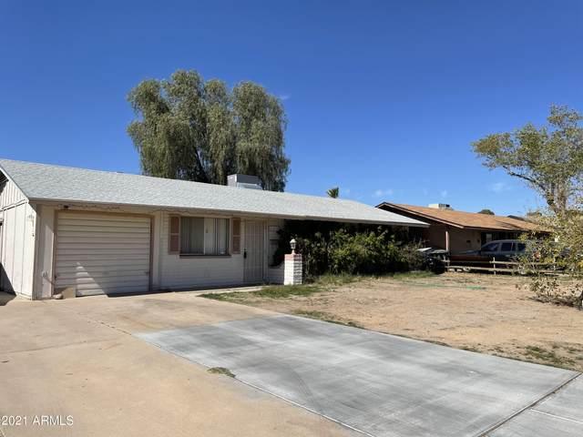 11438 N 25TH Avenue, Phoenix, AZ 85029 (MLS #6200973) :: The Laughton Team