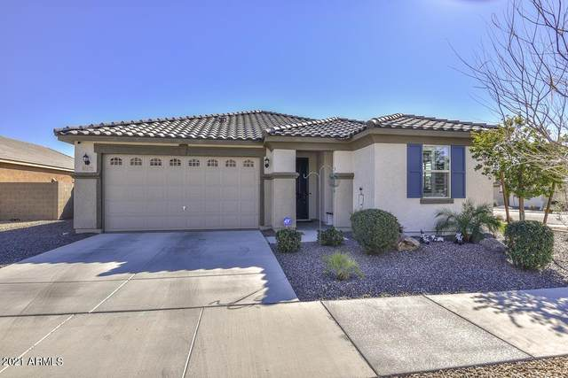 27177 N 171 Lane, Surprise, AZ 85387 (MLS #6201645) :: Dave Fernandez Team | HomeSmart