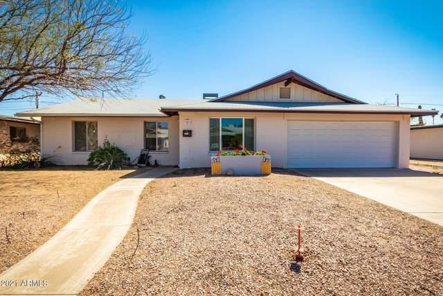 1411 E Campus Drive, Tempe, AZ 85282 (MLS #6201964) :: Lucido Agency