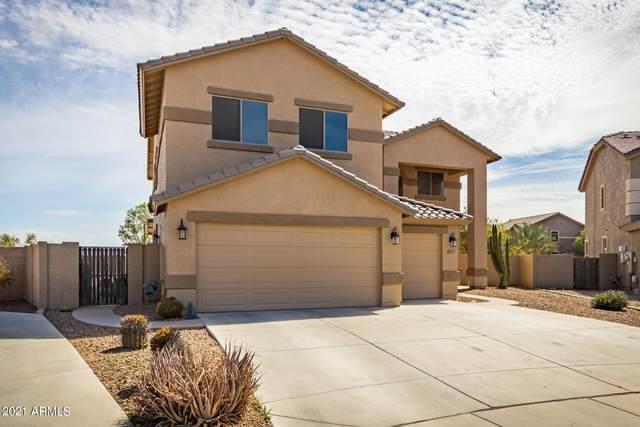 18265 N Larkspur Drive, Maricopa, AZ 85138 (MLS #6203473) :: Yost Realty Group at RE/MAX Casa Grande