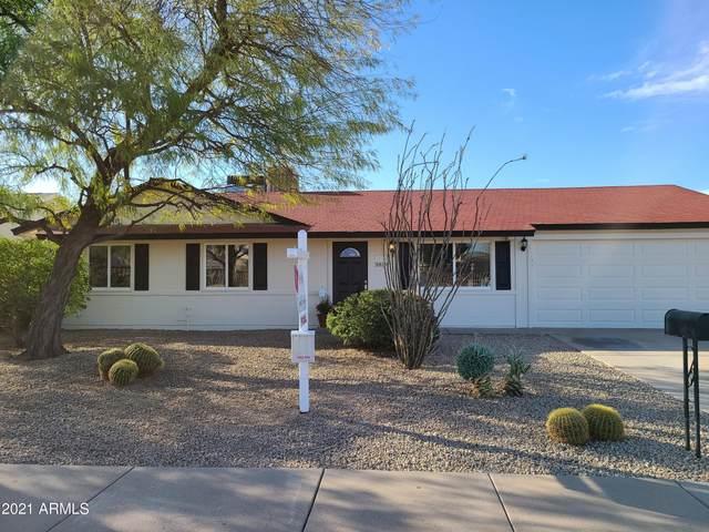3819 E Nisbet Road, Phoenix, AZ 85032 (MLS #6203475) :: Dave Fernandez Team | HomeSmart