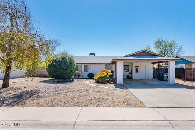 337 W Kristal Way, Phoenix, AZ 85027 (MLS #6203789) :: Yost Realty Group at RE/MAX Casa Grande