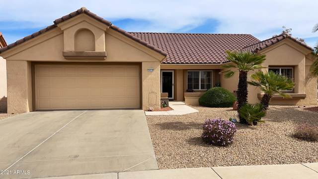 14116 W Tomahawk Way, Sun City West, AZ 85375 (MLS #6203814) :: Executive Realty Advisors