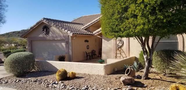 8364 E Golden Cholla Drive, Gold Canyon, AZ 85118 (MLS #6203945) :: Dijkstra & Co.