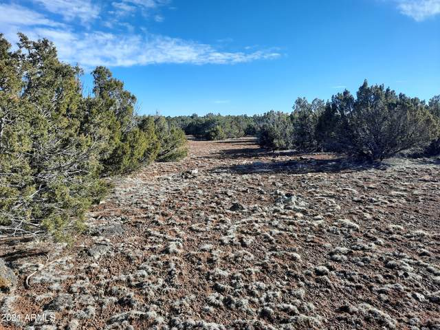 11 N 8339 Road, Show Low, AZ 85902 (MLS #6203988) :: The Riddle Group