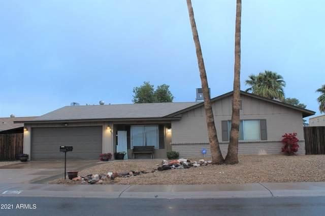 3640 W Bloomfield Road, Phoenix, AZ 85029 (MLS #6203991) :: Yost Realty Group at RE/MAX Casa Grande