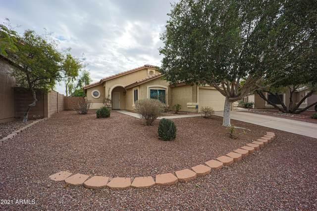 21407 N 87TH Drive, Peoria, AZ 85382 (MLS #6204206) :: Yost Realty Group at RE/MAX Casa Grande