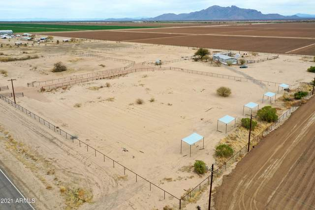 26222 S Sunshine Boulevard, Eloy, AZ 85131 (MLS #6204800) :: Yost Realty Group at RE/MAX Casa Grande