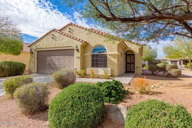 6610 W Yorktown Court, Florence, AZ 85132 (MLS #6205742) :: The Riddle Group