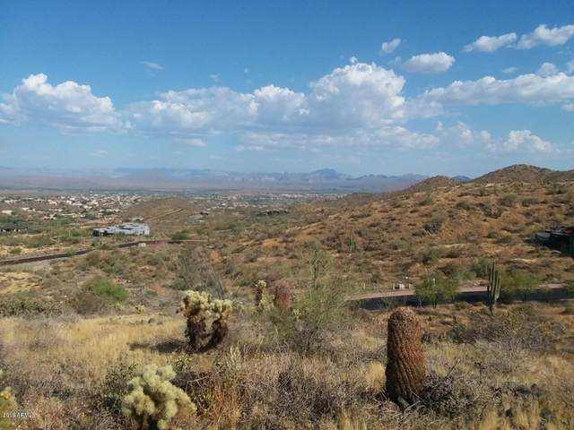 14007 E Bighorn Parkway, Fountain Hills, AZ 85268 (MLS #6205818) :: Long Realty West Valley