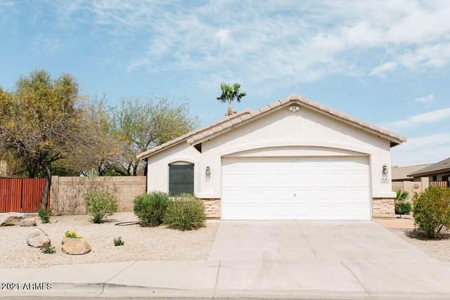 3404 E Marco Polo Road, Phoenix, AZ 85050 (MLS #6206251) :: Yost Realty Group at RE/MAX Casa Grande
