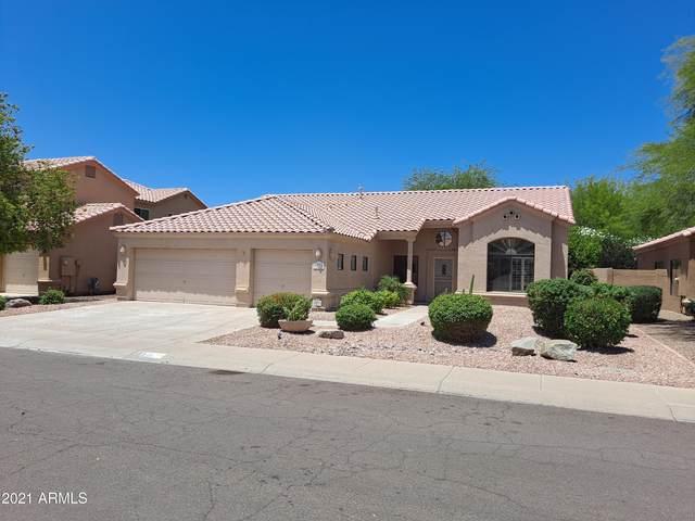 9074 E Caribbean Lane, Scottsdale, AZ 85260 (MLS #6206802) :: Yost Realty Group at RE/MAX Casa Grande