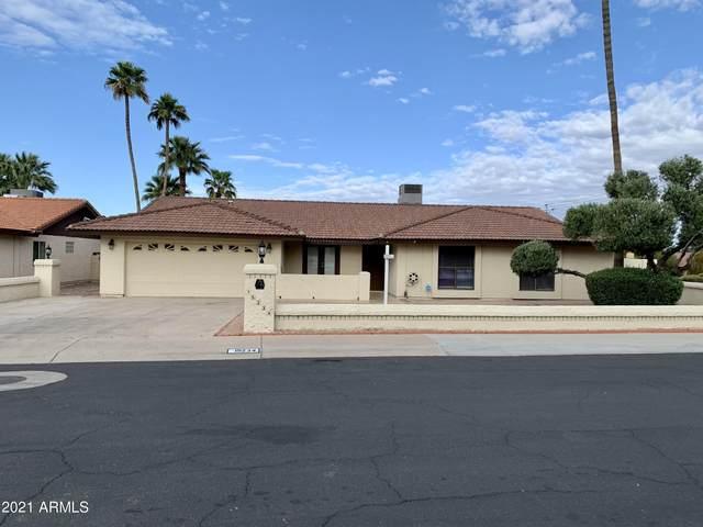 15234 N 6TH Street, Phoenix, AZ 85022 (MLS #6206867) :: Yost Realty Group at RE/MAX Casa Grande