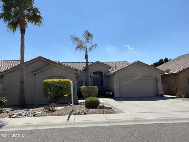 5125 E Phelps Road, Scottsdale, AZ 85254 (MLS #6207263) :: The Riddle Group